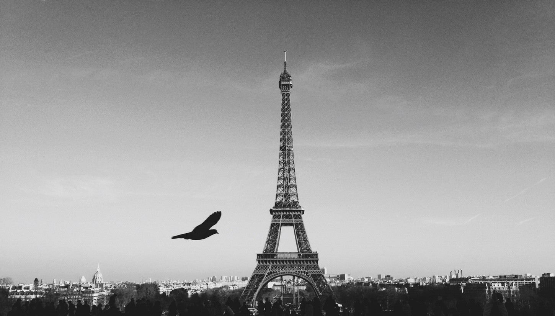 Coaching Orientation Paris